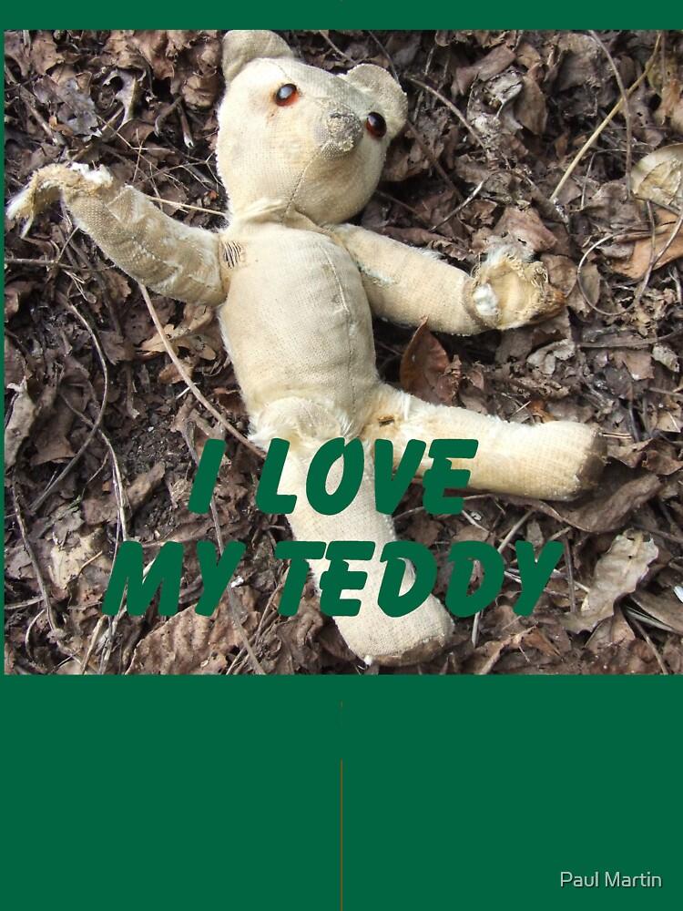 Teddy by paulm100