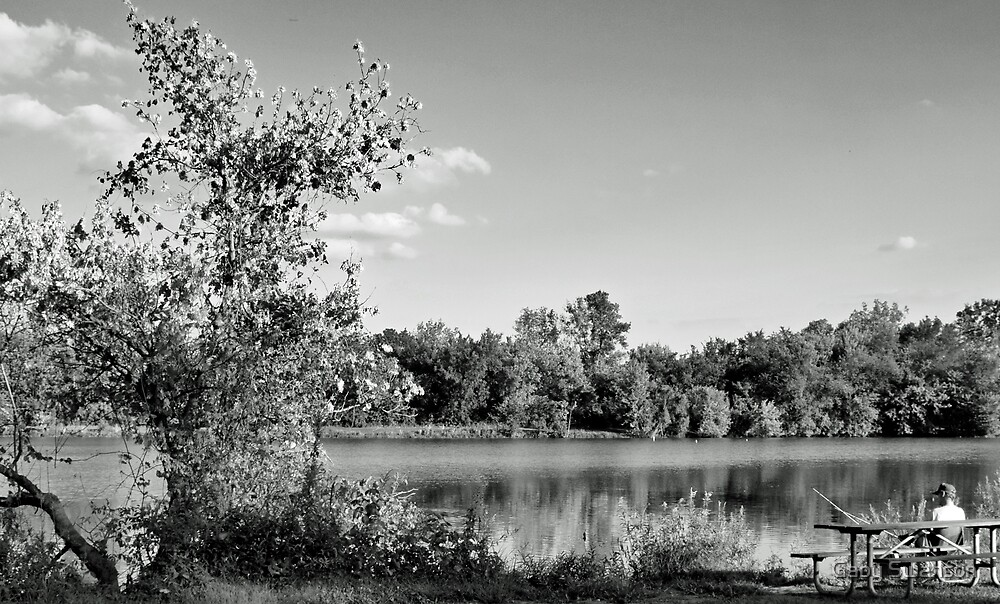 Heron Lake by Gabriele Swanson