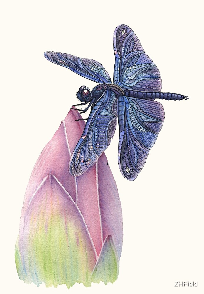 Dragonfly & Lotus by ZHField