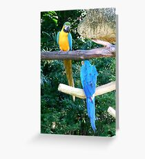 Artistic Gymnastics on Uneven Bars. Greeting Card