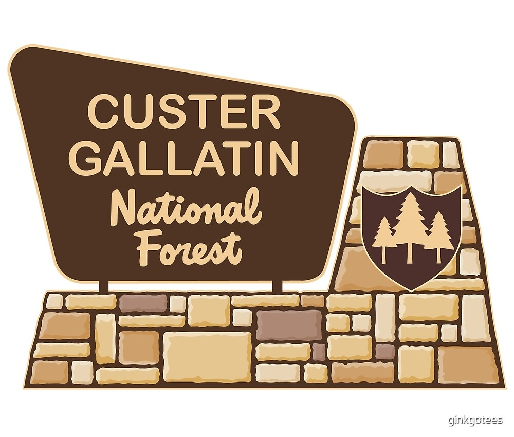 Custer Gallatin National Forest by ginkgotees