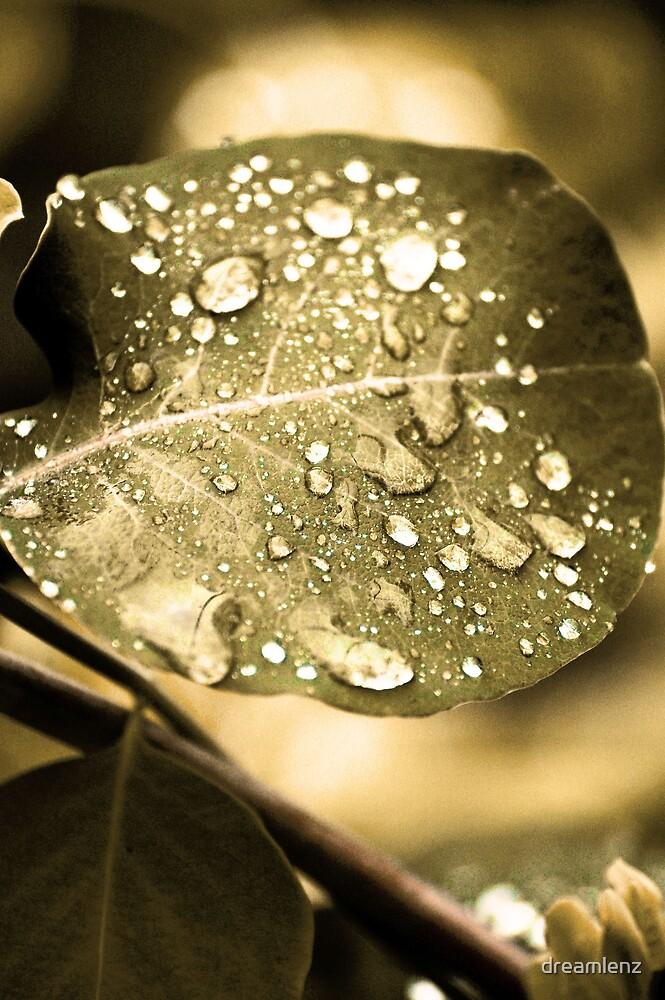 Soft Green Fresh by dreamlenz