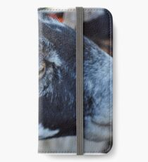 Blackface Sheep iPhone Wallet