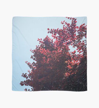 Lieber roter Baum Tuch