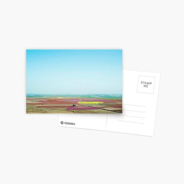 Dreamland Postcard