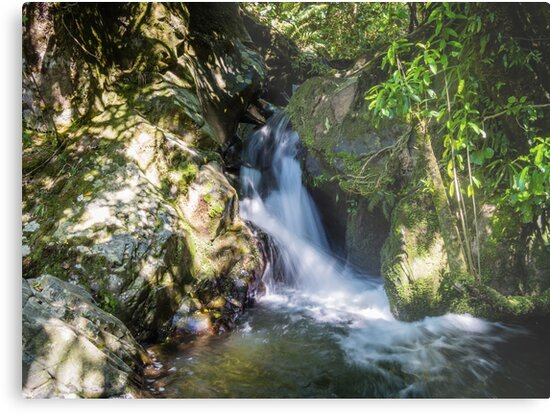 Flowing Stream Water by Michael McGimpsey