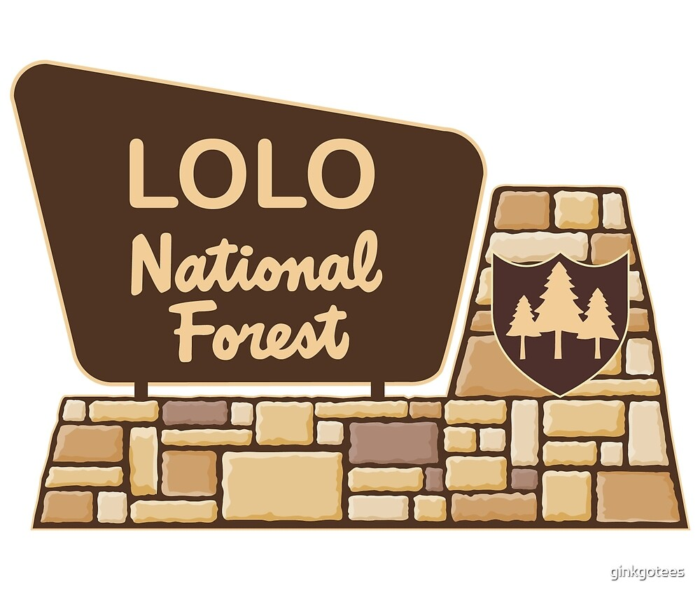 Lolo National Forest, by ginkgotees