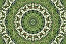 Green and White Farmers' Market Mandala by JanusianGallery