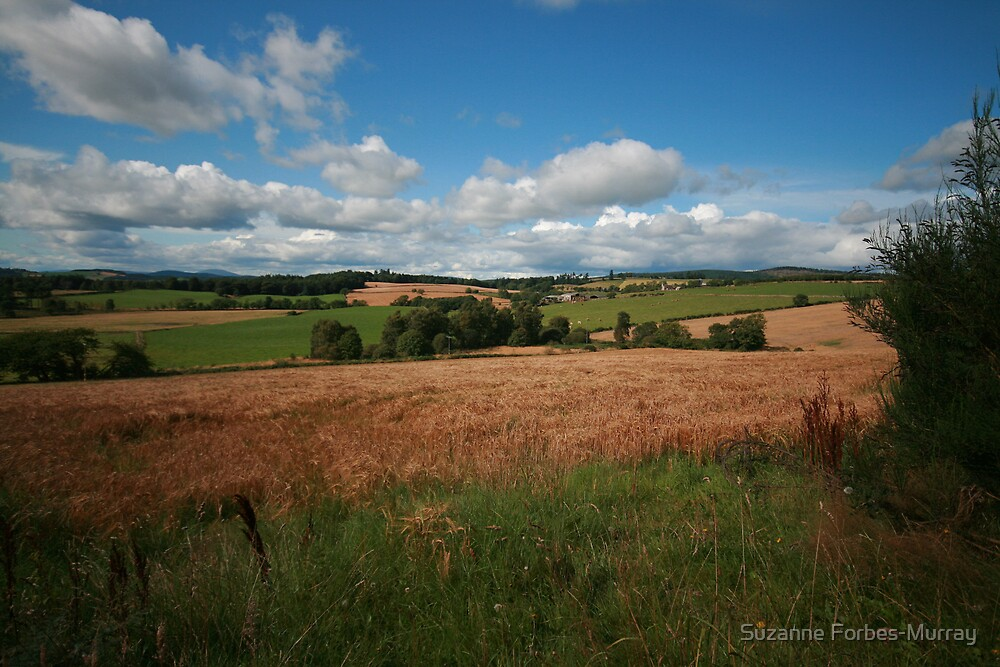Craigmyle Country by Suzanne Forbes-Murray