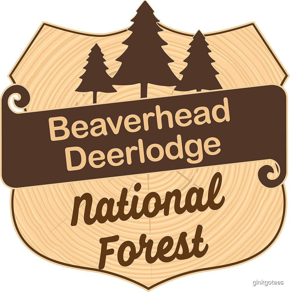 Beaverhead-Deerlodge National Forest by ginkgotees