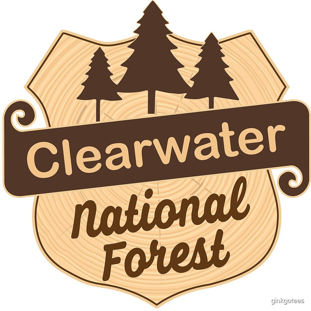 Clearwater National Forest by ginkgotees