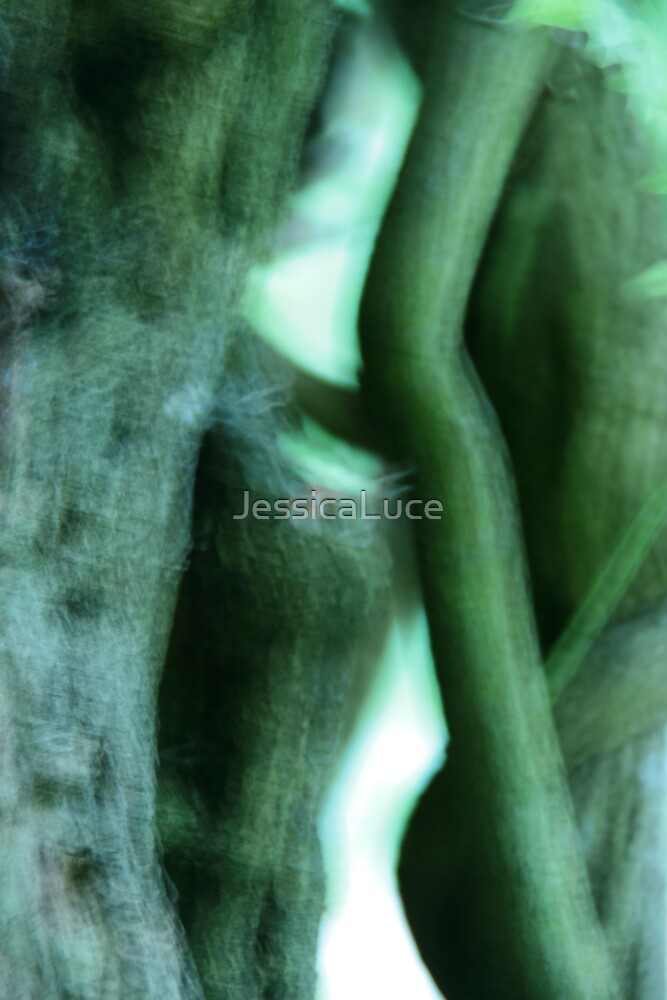 Ripples on the water by JessicaLuce