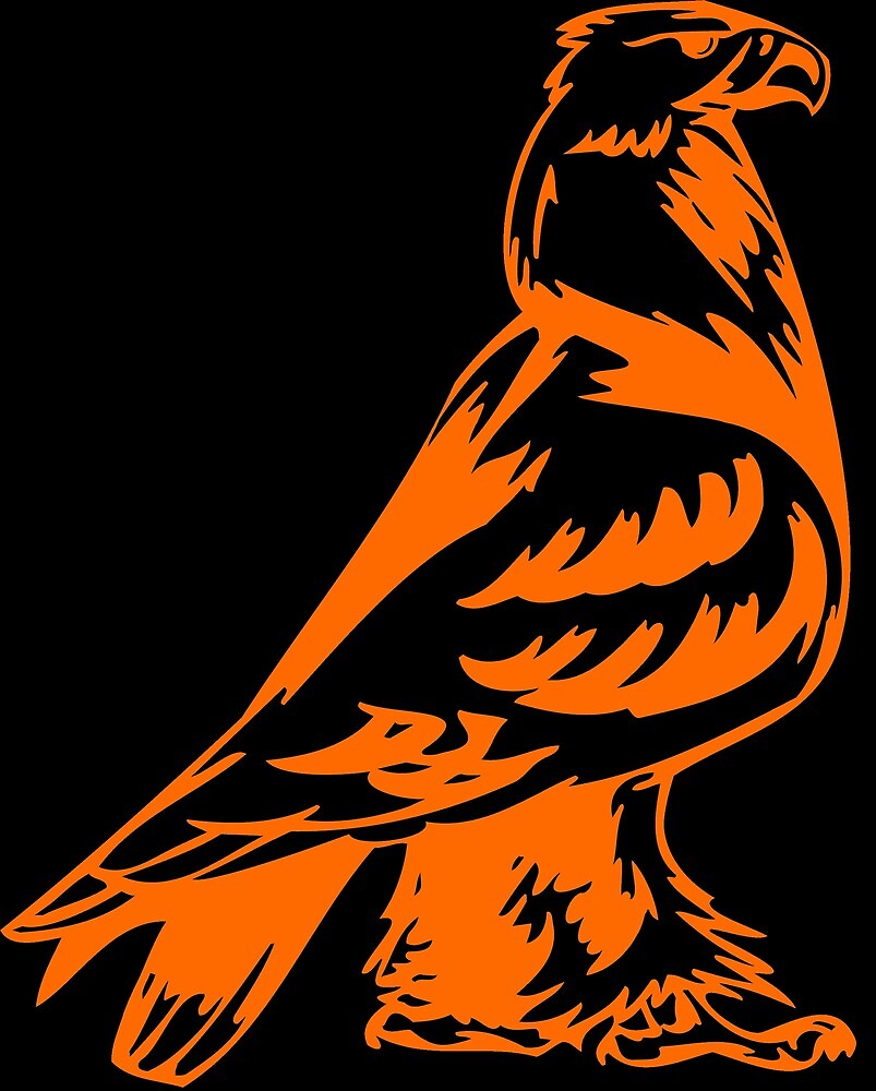 Eagle by birdsbirds