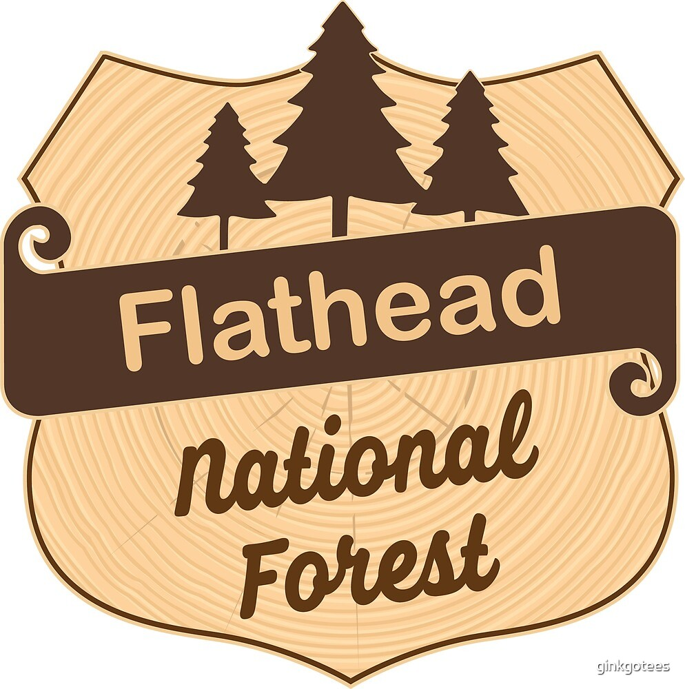 Flathead National Forest by ginkgotees