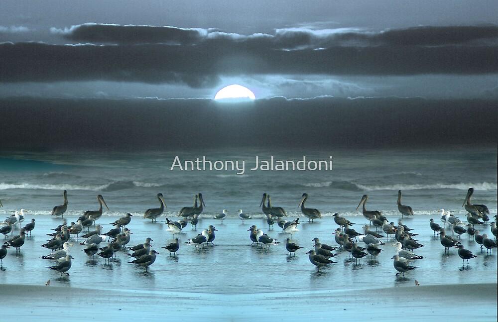 Moonrise by Anthony Jalandoni