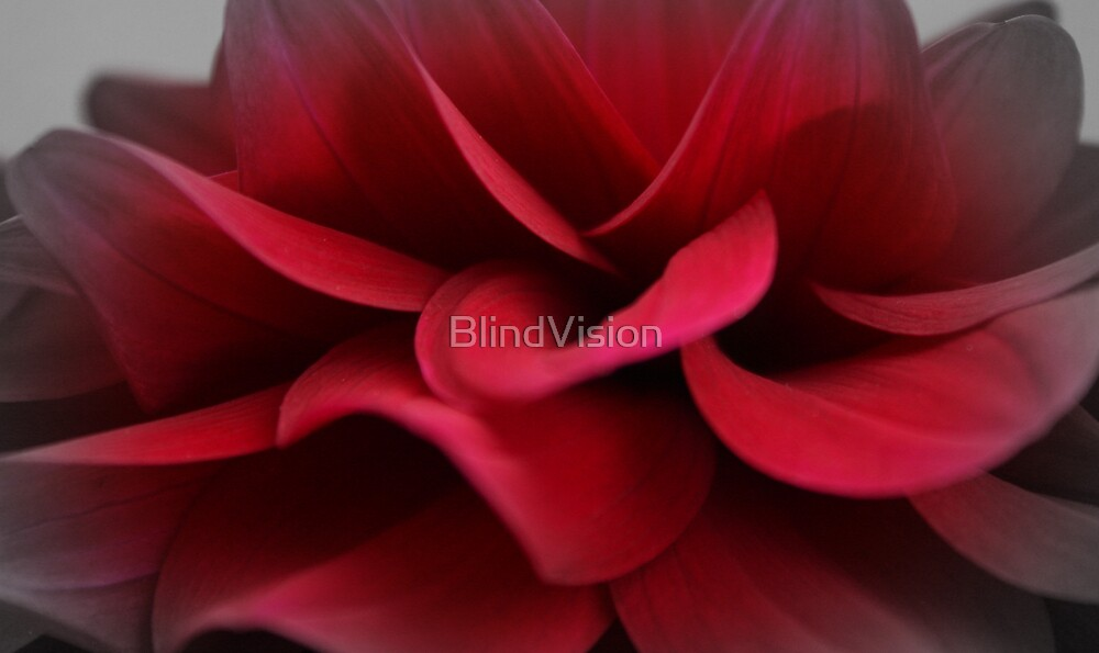 Seduction by BlindVision