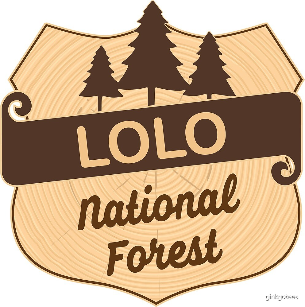 Lolo National Forest by ginkgotees