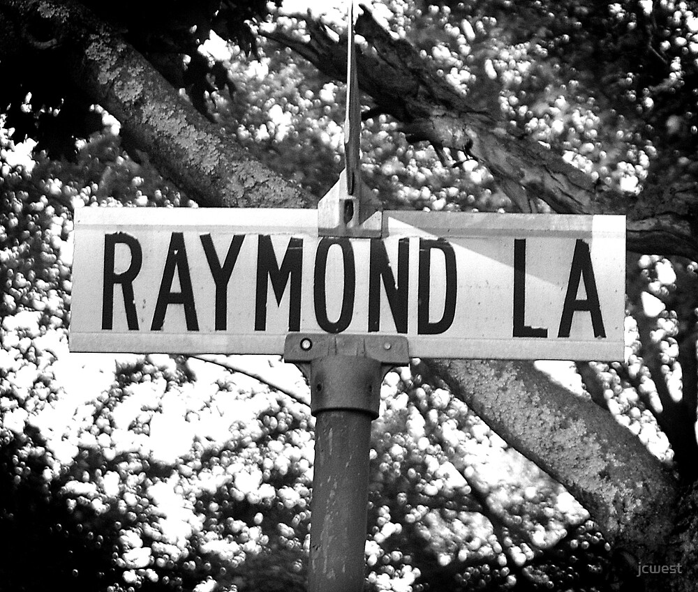 A Street Sign Named Raymond by jcwest
