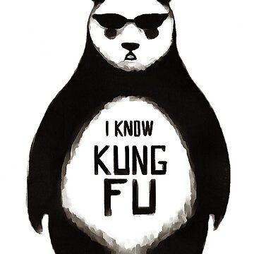 kung fu by BlaineDavis