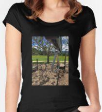 Playground Equipment Women's Fitted Scoop T-Shirt