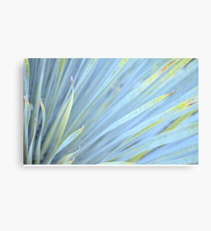Blur... Canvas Print