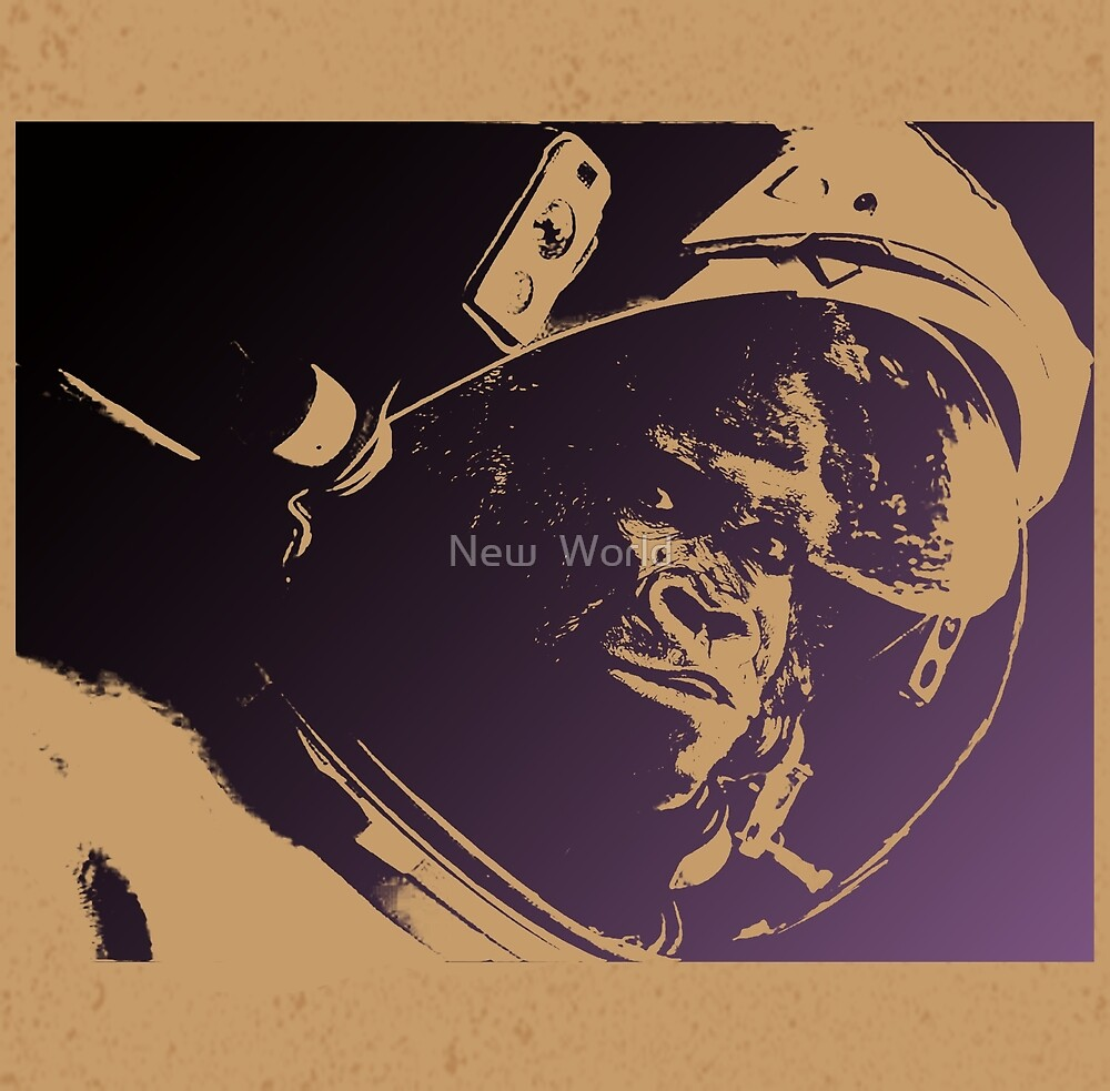 Space ape by New  World