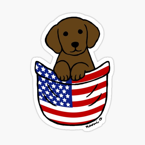 Chocolate Labrador Puppy Pocket Sticker