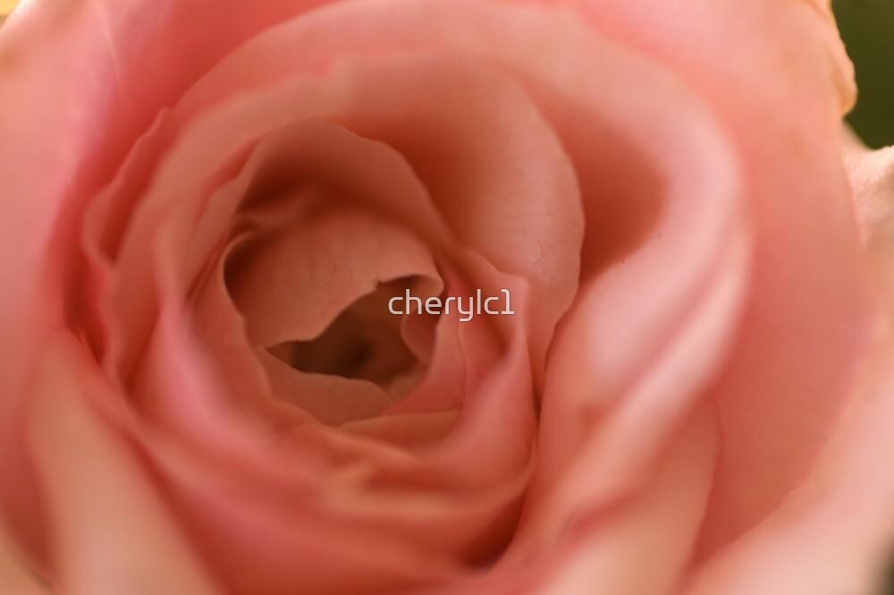 beauty in miniture! by cherylc1