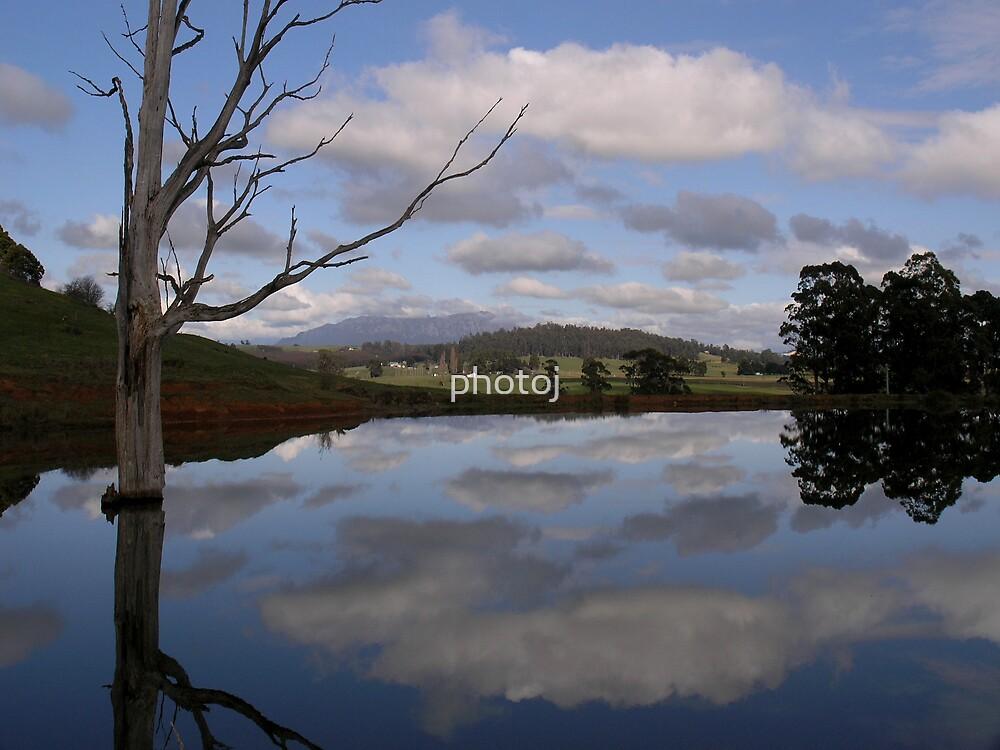 photoj Landscape  by photoj