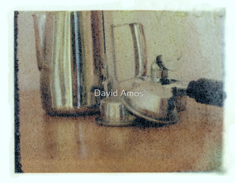 Still life - Poalroid Transfer by David Amos