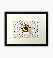 Bumble bees alive Framed Print