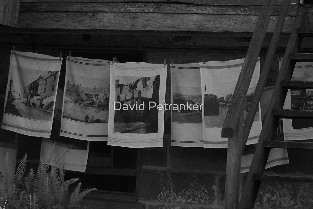 Tea Towels by David Petranker