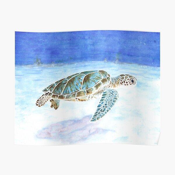 Sea turtle underwater Poster