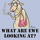 What Are Ewe Looking At ? by Jed Dunstan