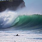 Warriewood beach NSW by Doug Cliff