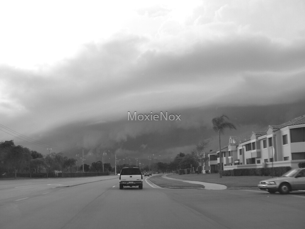 Brewing Storm by MoxieNox