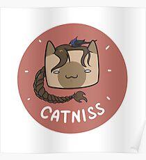 Catniss Poster