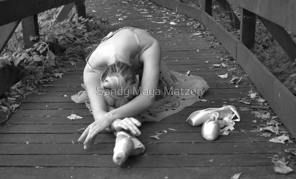 Simply ballet by Sandy Matzen