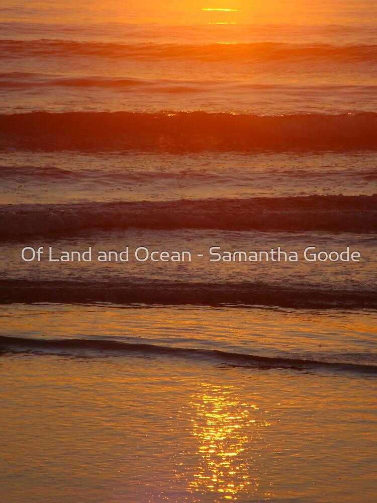 Sunlight on the ocean by Of Land & Ocean - Samantha Goode