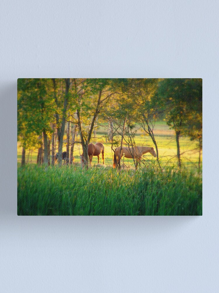 Alternate view of Sweet Pasture Paradise Canvas Print