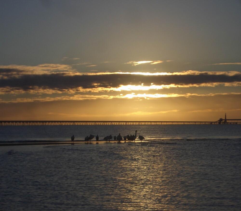 Sunrise Lucinda Sugar Terminal, North Queensland by wpcrighton