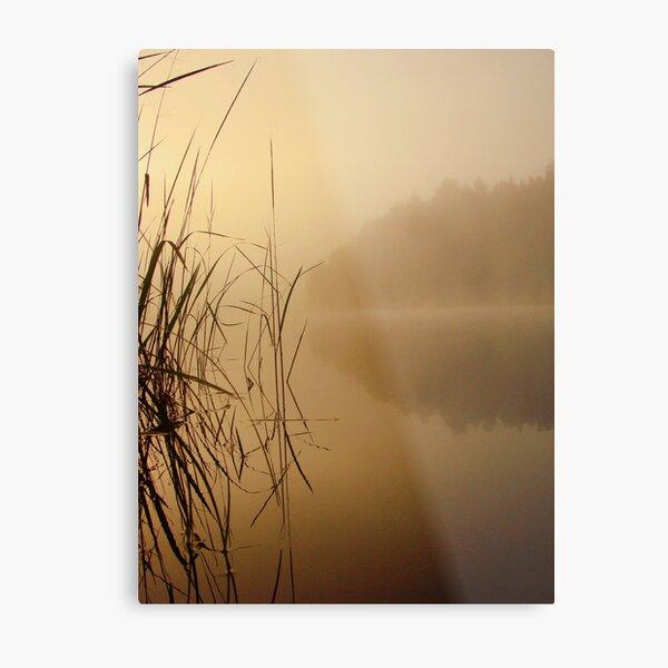 Nature and Silence Metal Print