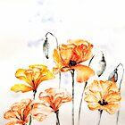 Poppies by AdrianaMijaiche