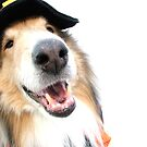 Collie Witch for Halloween by Jan  Wall