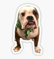 Bullbushka Pup Sticker
