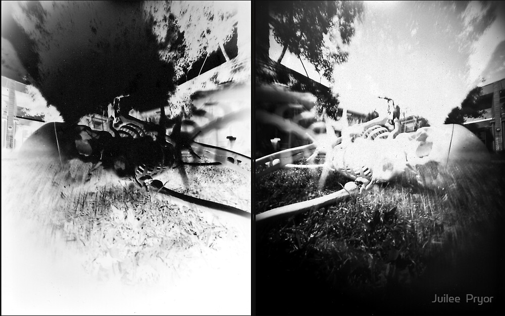 Pinhole Bones #2... doubled by Juilee  Pryor