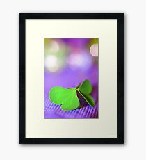 the butterfly 23 Framed Print