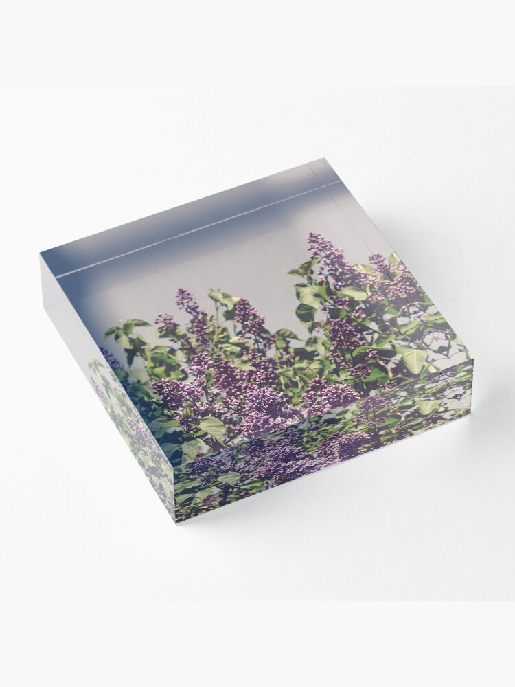 Alternate view of Wild Lilacs Acrylic Block