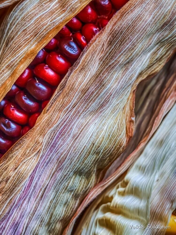 Colorful corn by wekegene