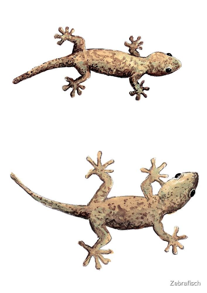 Geckos - good luck! by Zebrafisch